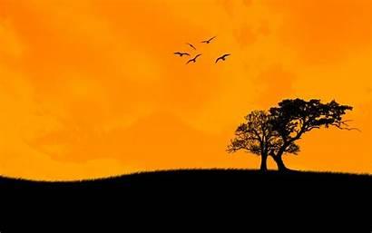 Sunset Trees Birds Najdorf Sicilian Anime Learn