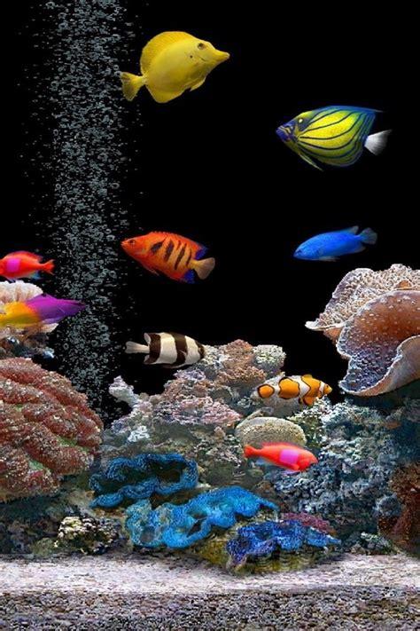 screen savers aquarium fish plants wallpaper