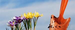 Was Ist Halbschatten : gartenpflanzen beliebte arten sowie tipps zur pflege und berwinterung ~ Orissabook.com Haus und Dekorationen