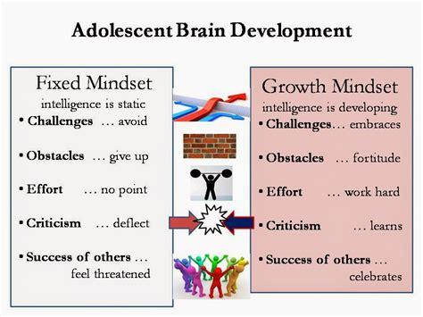 Brain development stages in adults jpg 960x720