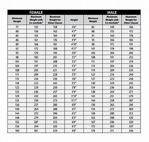 Free 7  Sample Height Weight Chart Templates In Pdf