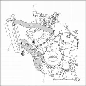 Cooling System Diagrams - Yamaha R6