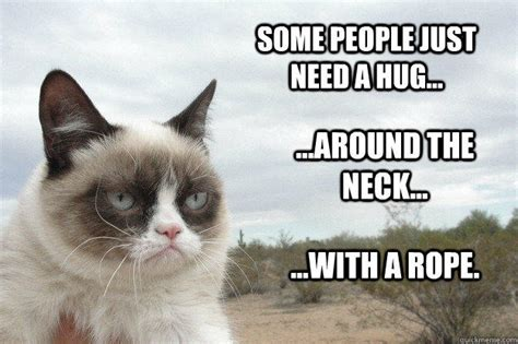 Cat Hug Meme - some people just need a hug around the neck with a rope grump cat quickmeme