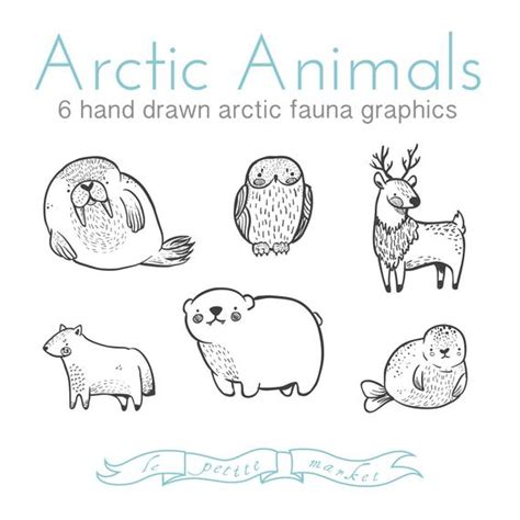 Cute Doodly Hand Drawn Arctic Animal Clipart Lepetitemarket