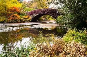 The Gapstow Bridge in Autumn Colors New York City