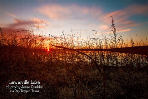 lewisville lake day trippin texas