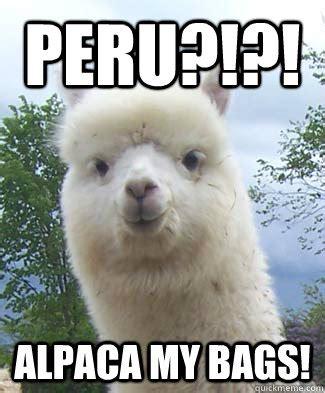 Alpaca My Bags Meme - peru alpaca memes
