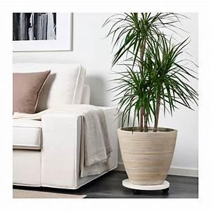 Grand Pot De Fleur Interieur : pekann t cache pot rotin pots de fleurs jardinage et ~ Premium-room.com Idées de Décoration