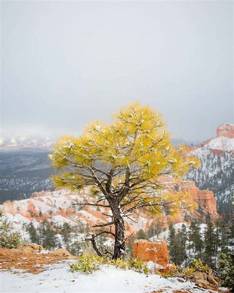 Stunning Adventure Photography By Eric Bunting Elbunt