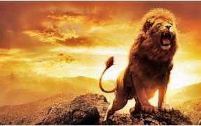 Wallpapers Arslan Name The Chronicles Of Narnia Wallpaper Aslan Roaring