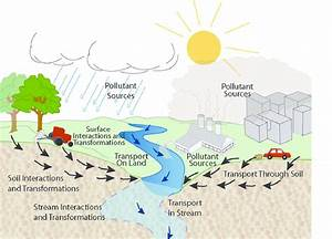 Water Quality Pollution Problems Within The Hydrologic