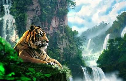 Tiger Painting Wallpapers Desktop Cave