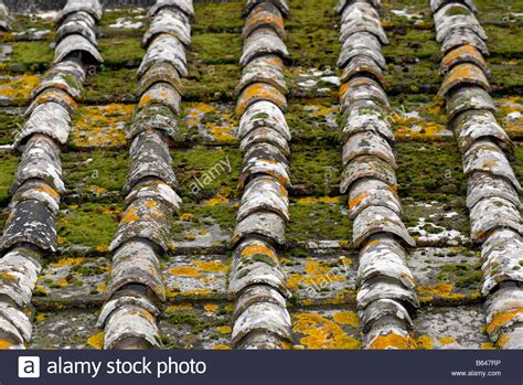 Green Roof Tiles Stock Photos & Green Roof Tiles Stock Metal Roof Over Shingles Furring Strips Corley Roofing Reviews Red Inn In Queens Ny Lone Star Jomax Cleaner S And R Chicago O Hare Airport Automotive Vents