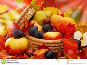 Panier A Fruit : panier des fruits d 39 automne photo stock image du jardin nourriture 27402002 ~ Teatrodelosmanantiales.com Idées de Décoration