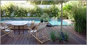 Bambus Auf Balkon : bambus auf dem balkon download page beste wohnideen galerie ~ Michelbontemps.com Haus und Dekorationen