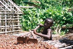 The Chocolate Industry Exposed: Child Labor, Trafficking ...