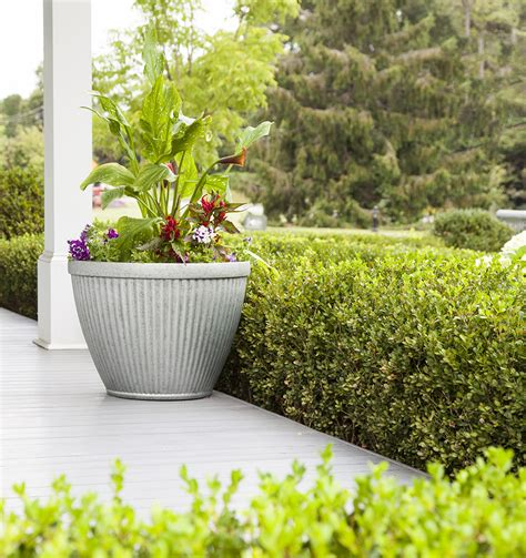 southern patio planters hdr 20 5 quot westland planter galvanized southern patio