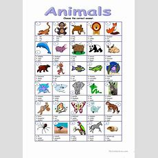 Animals  Multiple Worksheet  Free Esl Printable Worksheets Made By Teachers