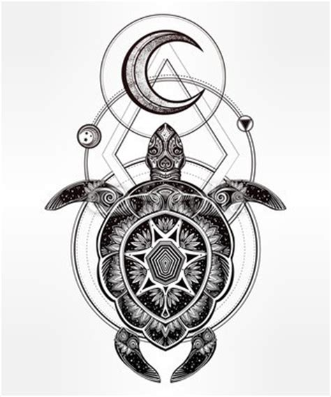 mandala shell turtle   moon  geometric drawings