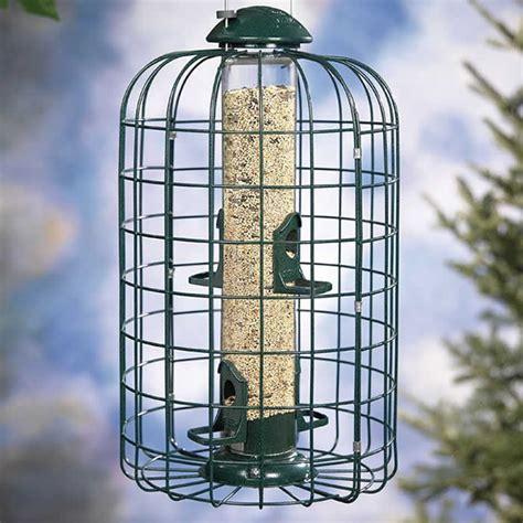 duncraftcom squirrel proof cage feeder