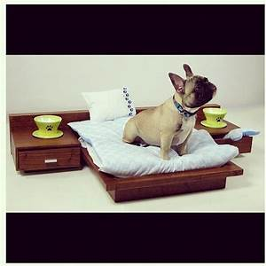17 best images about modern dog ideas on pinterest pet With scandinavian dog bed