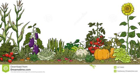 vegetable gardening clipart clipground