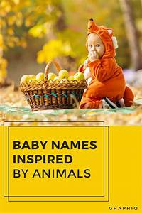 Baby Names Inspired by Animals | Cute halloween costumes ...