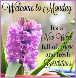 welcome to monday its a new week pictures photos and images for
