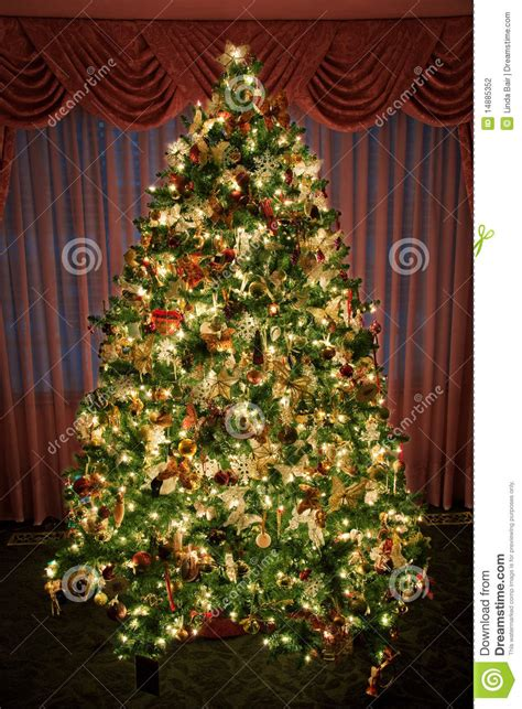 decorated lighted christmas tree stock photo image