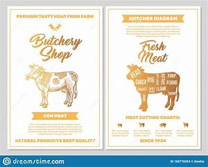 Butchery Shop Poster With Cow Meat Cutting Charts In