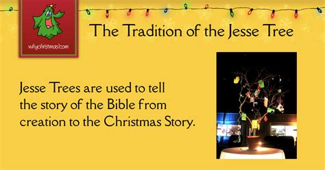 jesse trees christmas customs  traditions