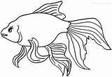 Goldfish Fish Pages Coloring Gold Printable Template Drawings Christmas Cool2bkids Getcolorings Cracker Getcoloringpages sketch template