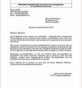 Ville Du Cameroun En 4 Lettres : mod les de lettres de motivation lm gratuits t l charger domaine commercial vente ~ Medecine-chirurgie-esthetiques.com Avis de Voitures
