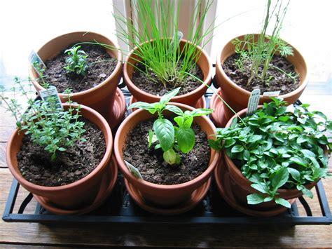 Herb Garden Indoor : Creating An Herb Garden Indoor-the Sill