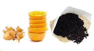 101 ingenious uses for coffee grounds, egg shells, fruit peels + more. Composting Kitchen Surpluses: Eggshells, Coffee Grounds, and Orange Peels - Uncle Jim's Worm Farm