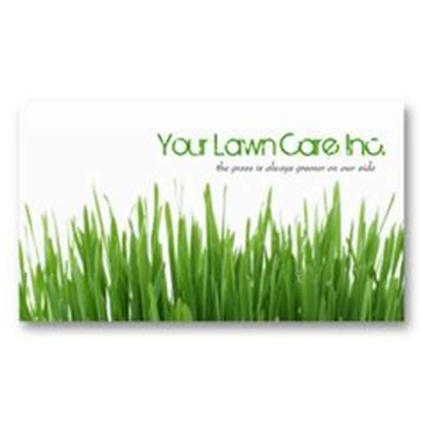 1000 images about lawn service on lawn care