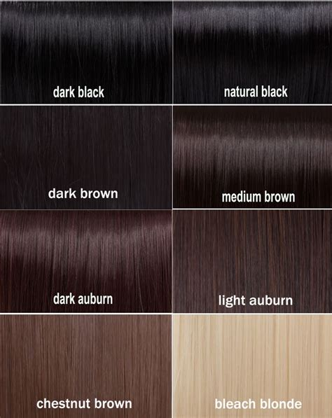 Different Black Hair Colors by Amazing Brown Hair Color Chart 12 Black Hair Color