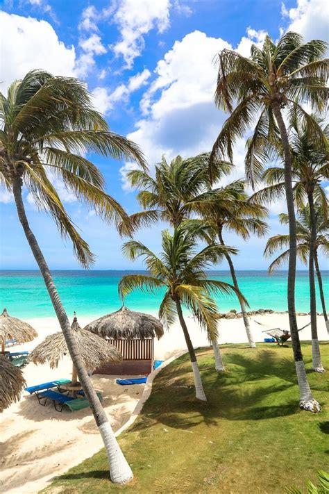 aruba best all inclusive 17 best ideas about aruba resorts on palm