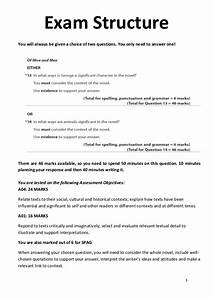 Essays On Health Care Reform Tess Of The Durbervilles Essay Prompts Essay On English Literature also Thesis Statement For Education Essay Tess Of The D Urbervilles Essay Topics Top Problem Solving Writing  Teaching Essay Writing High School