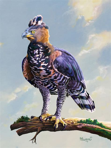 crowned eagle painting by anthony mwangi