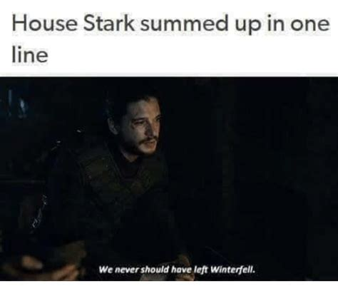 One Line Memes - house stark summed up in one line we never should have left winterfell meme on me me