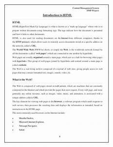 project management essay
