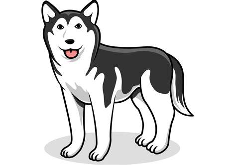 husky  vector art   downloads