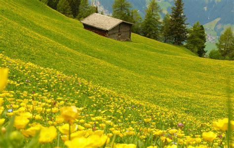 il poggio fiorito il poggio fiorito parco