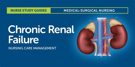 chronic renal failure nursing care  management study guide