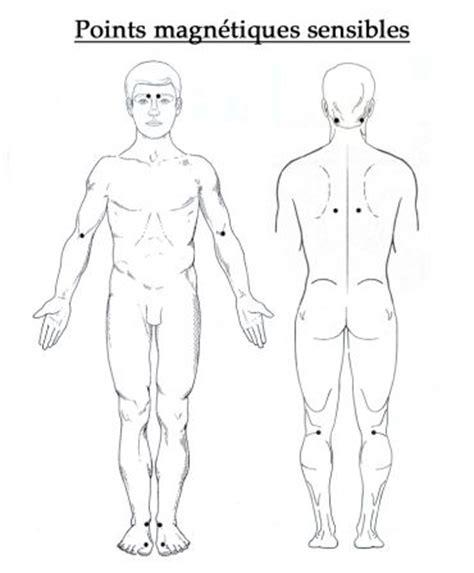 meridien du corps humain g 233 obiologie feng shui radiesth 233 sie bilan energetique