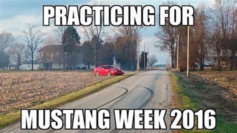 Ford Mustang Memes - mustang joke meme www imgkid com the image kid has it