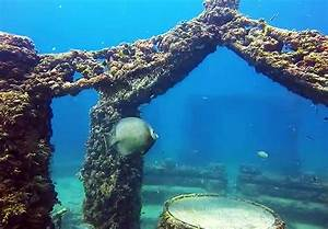 The Neptune Memorial Reef In Florida Is An Attraction That