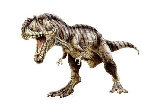 Dinosaur Bigger Than T Rex Giganotosaurus Dinosaurs
