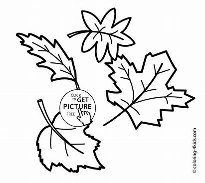 Coloring Autumn Leaves Pages Printable Seasons Leafs